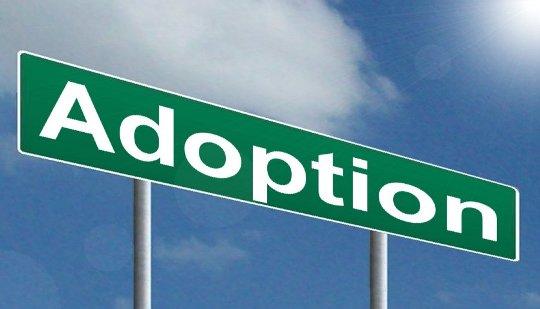 Adoption Deed in Noida